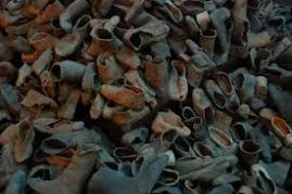 Piles of shoes from the victims of Auschwitz